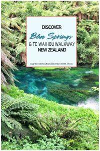 Blue Springs & Te Waihou Walkway
