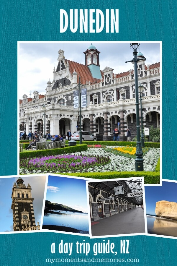 Best things to do in Dunedin for FREE