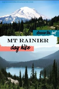 Pin image for Mt Rainier day hike