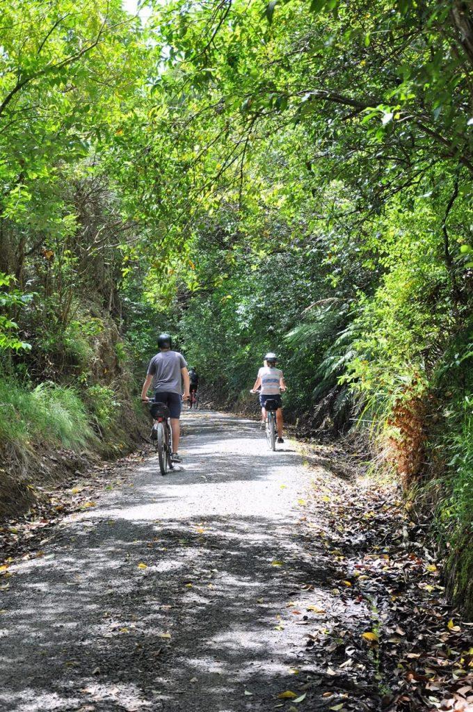 Ride the Hauraki Rail Trail