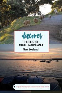 Discover the best of Mount Maunganui