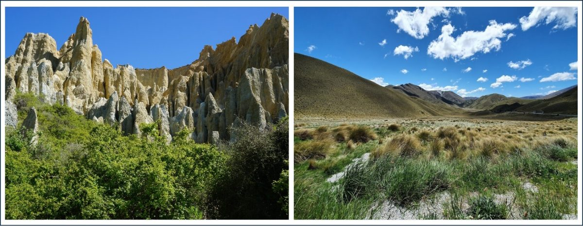 Clay Cliffs and the Lewis Pass - amazing sights on your South Island road trip